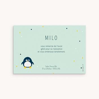 Carte de Remerciement Naissance Famille Pingouins