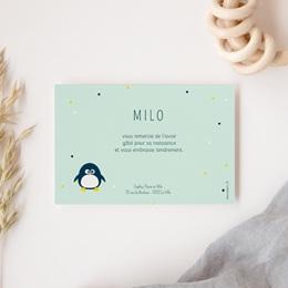 Carte de Remerciement Naissance Famille Pingouins gratuit