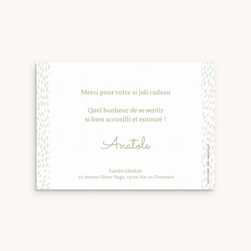Carte de Remerciement Naissance Le Petit Prince décroche la Lune pas cher