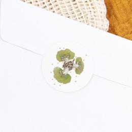 Sticker Enveloppe Naissance Le baobab vert gratuit