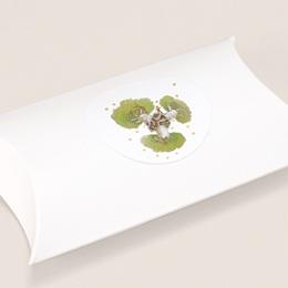 Sticker Enveloppe Naissance Le baobab vert