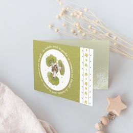 Faire-part de Naissance Le baobab vert, double volet gratuit