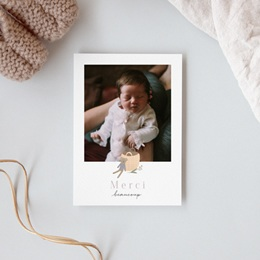 Carte de Remerciement Naissance Petit ourson, Portrait gratuit