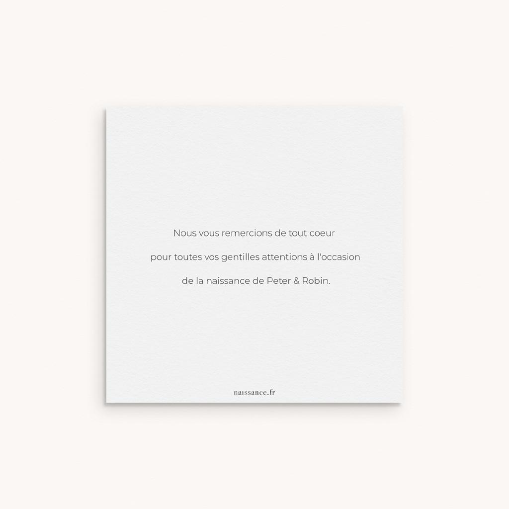 Carte de Remerciement Naissance Tryptique Jumeaux, Portrait pas cher