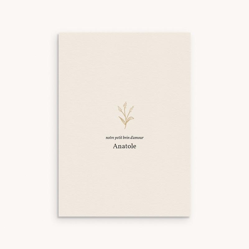 Faire-part de Naissance Brin minimaliste doré, Photo