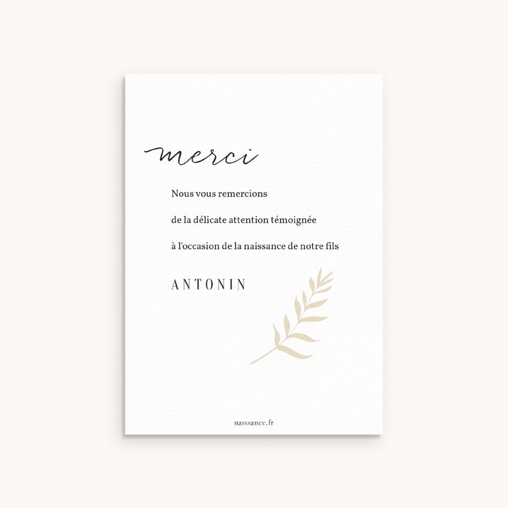 Carte de Remerciement Naissance Fougère Minimaliste, Dorure pas cher