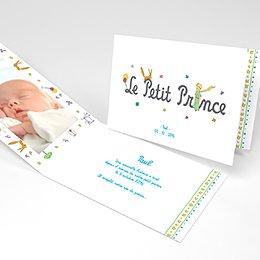 Faire-part de Naissance Le Petit Prince 13
