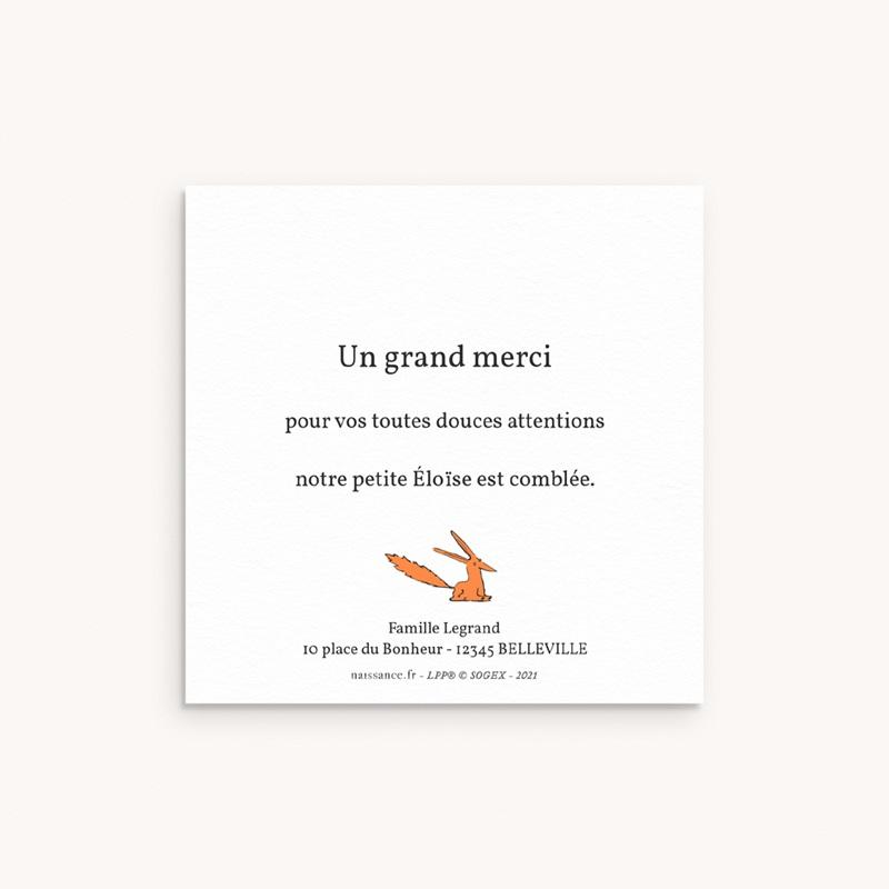Carte de Remerciement Naissance L'amitié du renard, 10 x 10 pas cher