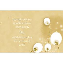 Faire-part de Naissance Fleur de Coton sans photo