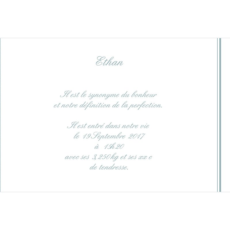Faire-part de Naissance Petit Versailles Bleu