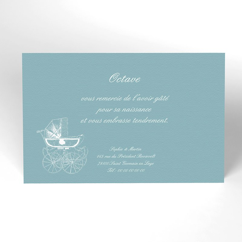 Carte de Remerciement Naissance Petit Versailles Bleu
