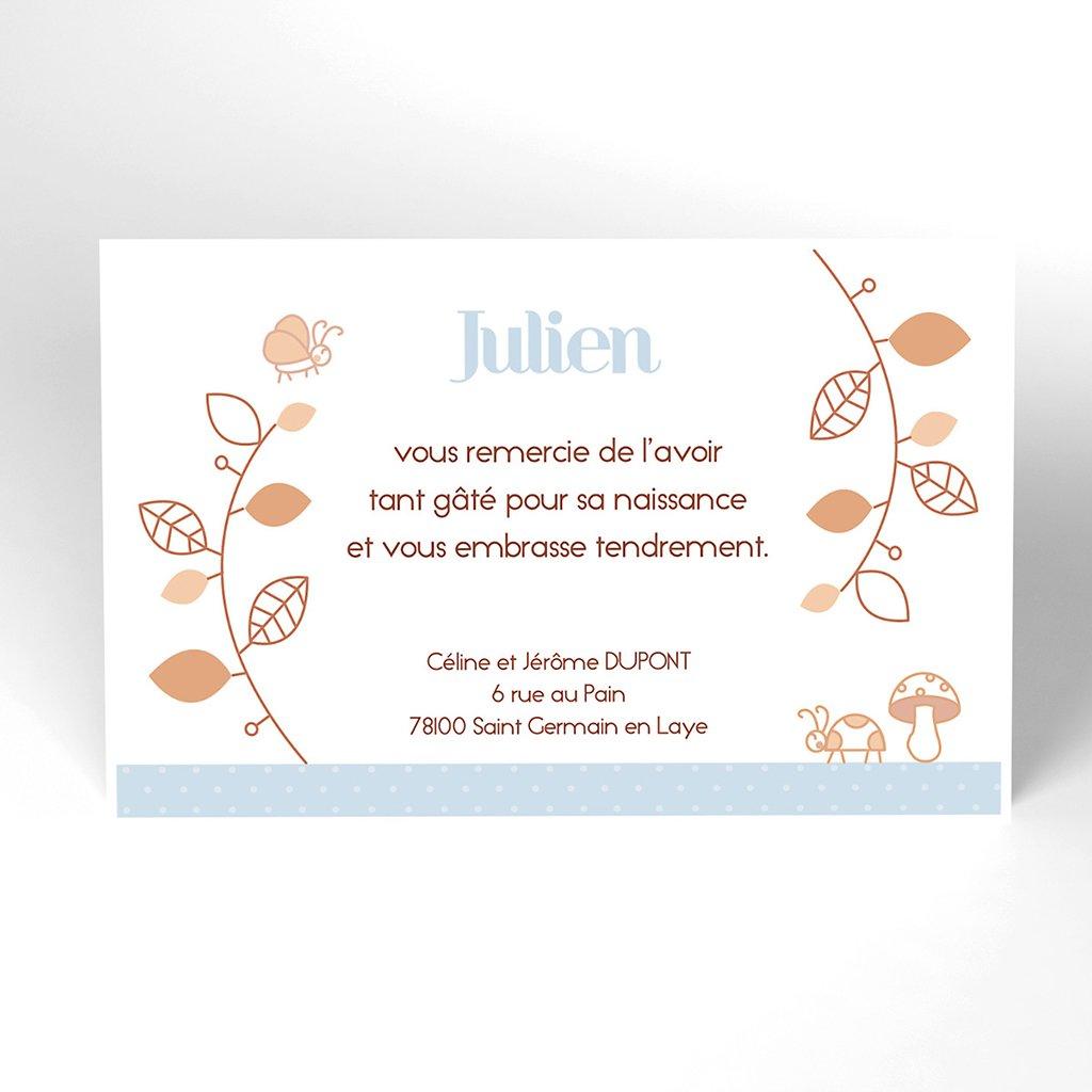 Carte de Remerciement Naissance Le Petit Faon bleu