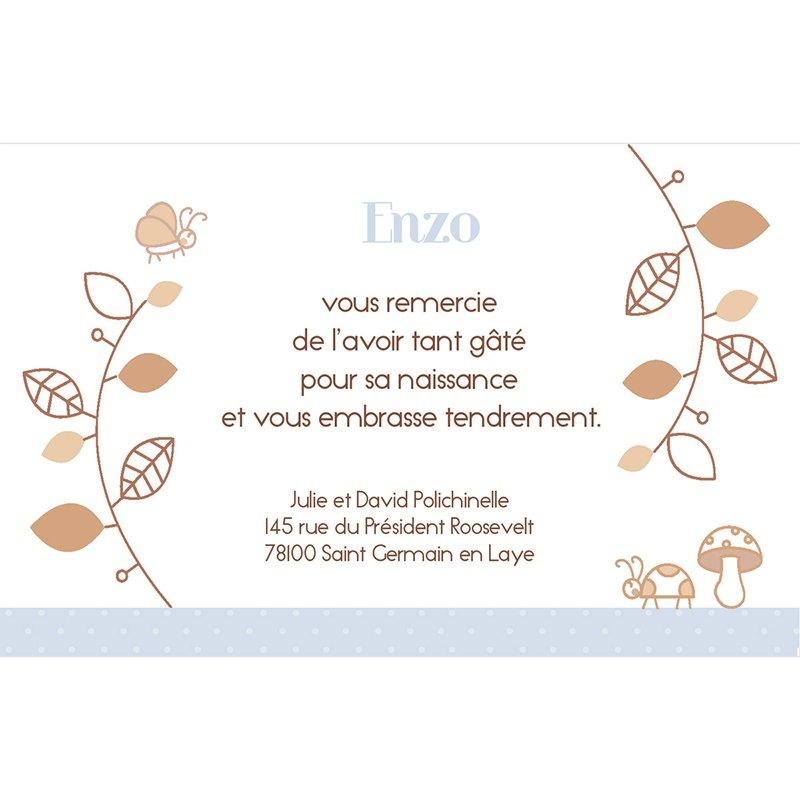Carte de Remerciement Naissance Le Petit Faon bleu pas cher