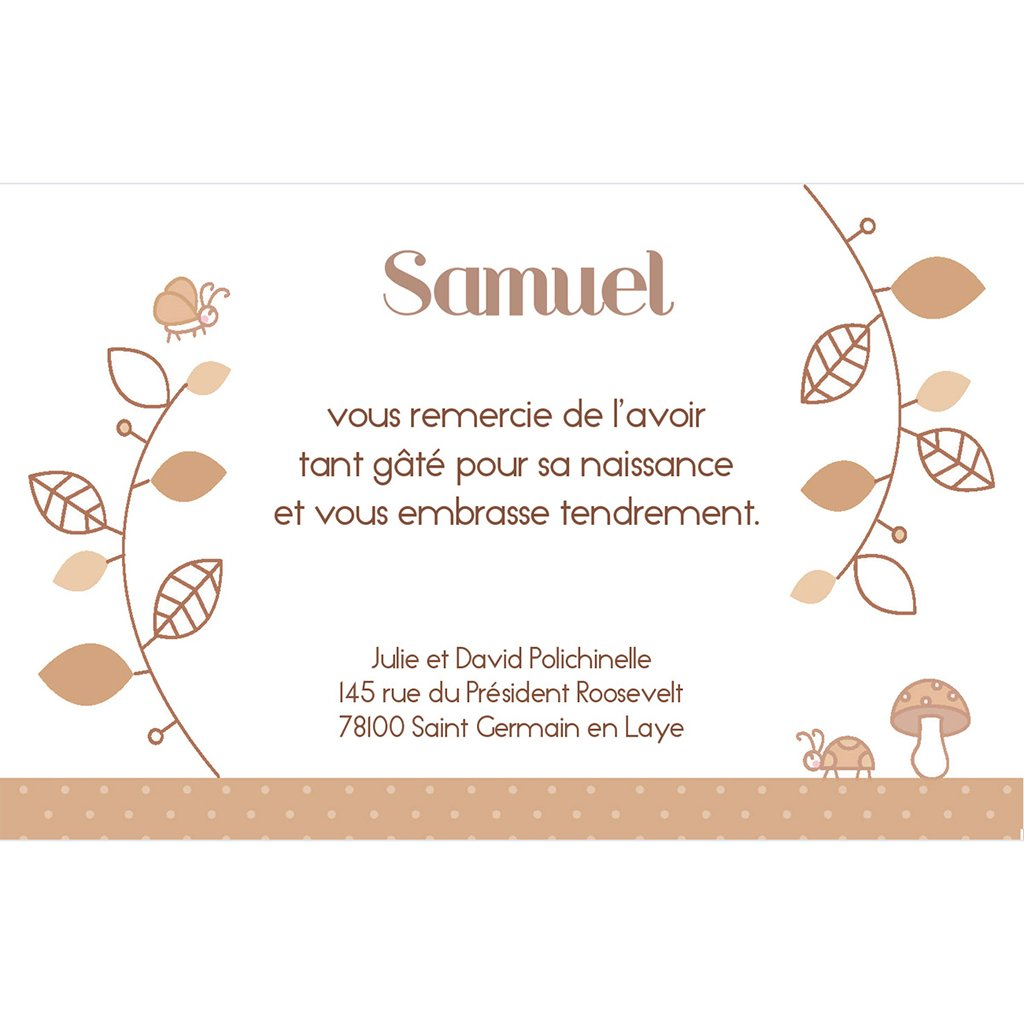 Carte de Remerciement Naissance Le Petit Faon beige pas cher