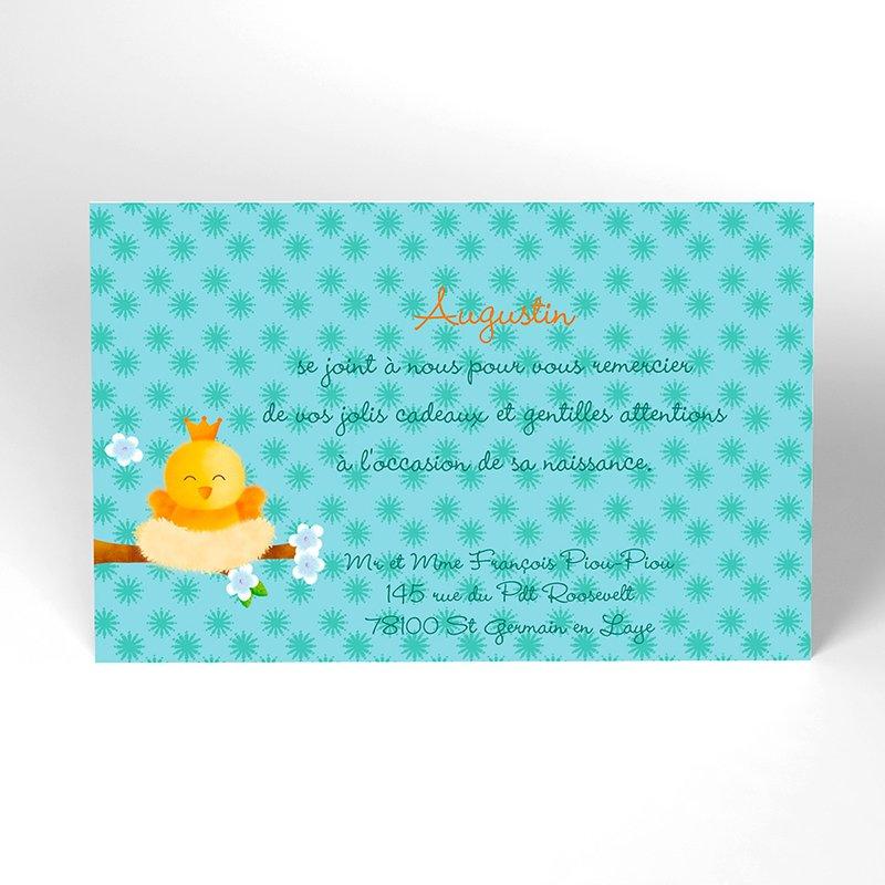 Carte de Remerciement Naissance Piou-piou bleu