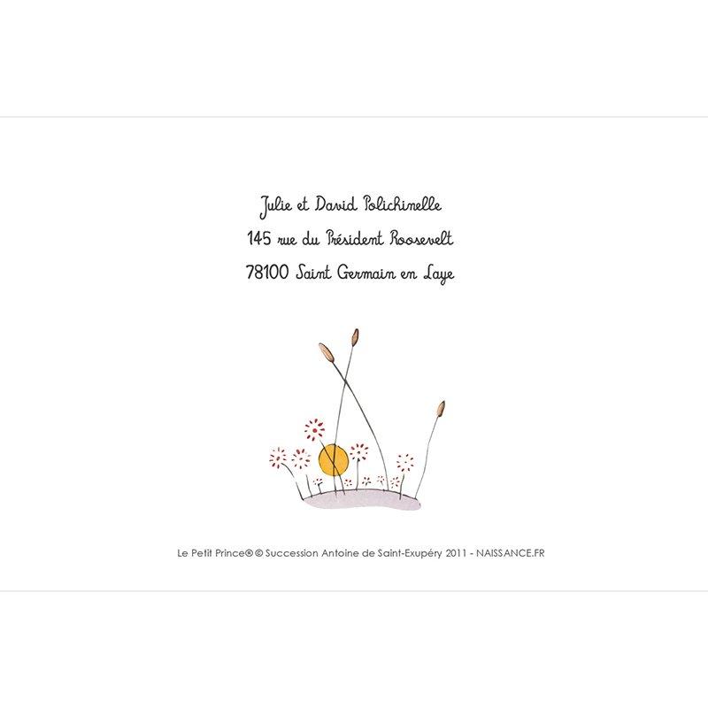 Faire-part de Naissance Le Petit Prince 8 gratuit