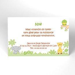 Carte de Remerciement Naissance La Savane
