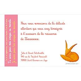 Carte de Remerciement Naissance Le Petit Prince 4 pas cher