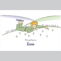 Faire-part de Naissance Le champ de roses du Petit Prince pas cher