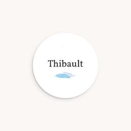 Sticker Enveloppe Naissance Plumes Bleues, prénom