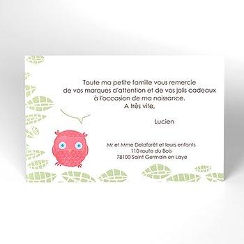 Carte de Remerciement Naissance Chouette famille personnalisé
