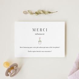 Carte de Remerciement Naissance Chou-Fleur gratuit