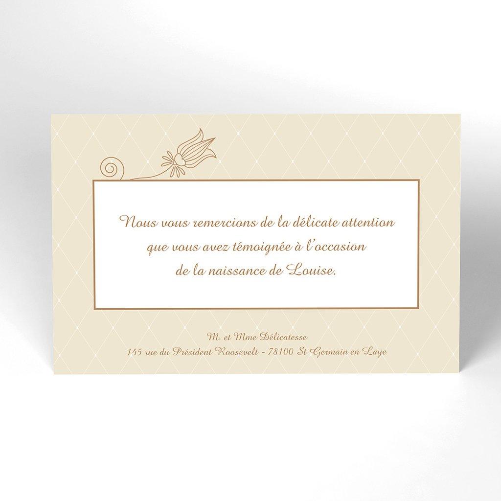 Carte de Remerciement Naissance Délicatesse