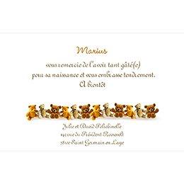 Carte de Remerciement Naissance Ourson pas cher
