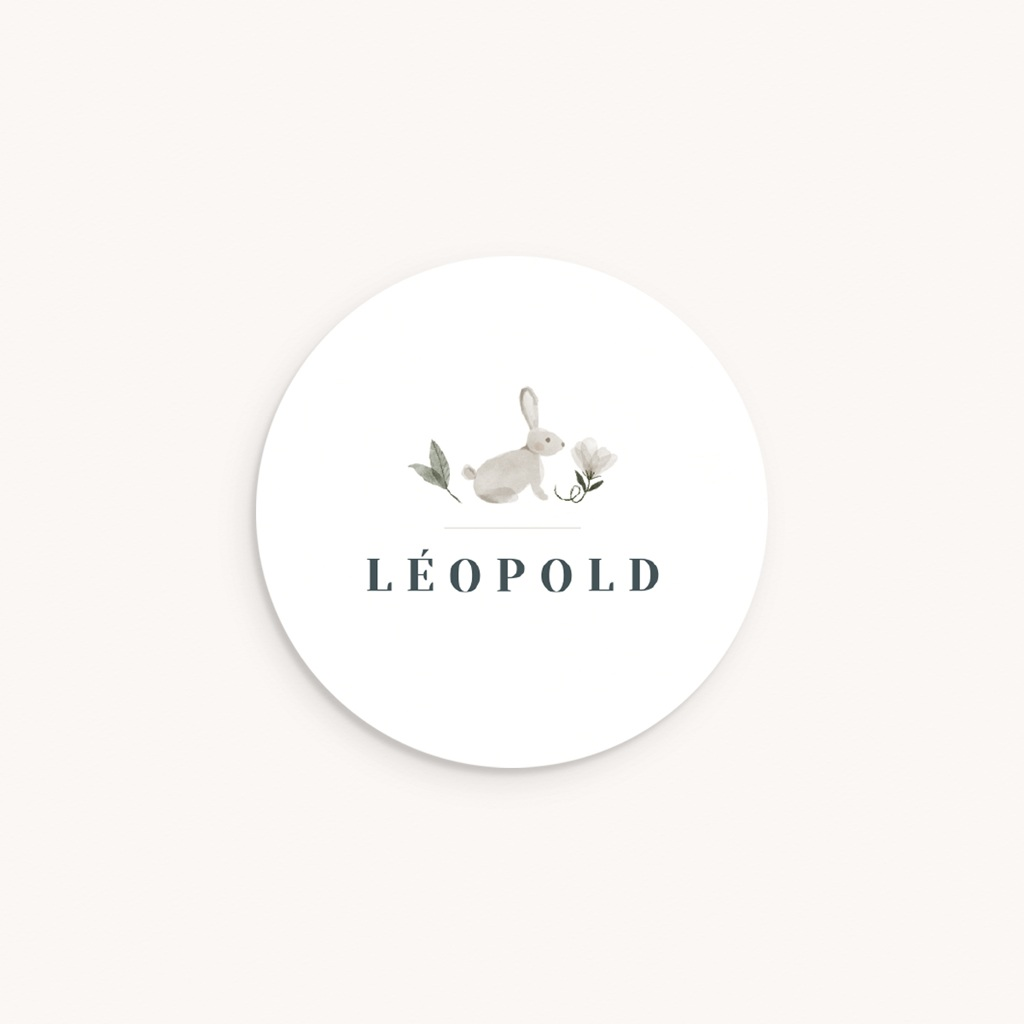 Sticker Enveloppe Naissance Lapin des près, Prénom