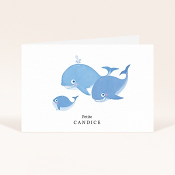 Faire-part de Naissance Les Petites Baleines pas cher