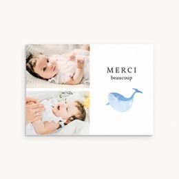 Carte de Remerciement Naissance Les Petites Baleines