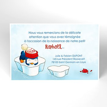 Carte de Remerciement Naissance Pingouin original