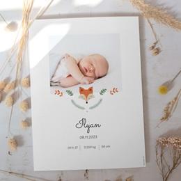 Affiche Déco Chambre Enfant Joli Renard gratuit