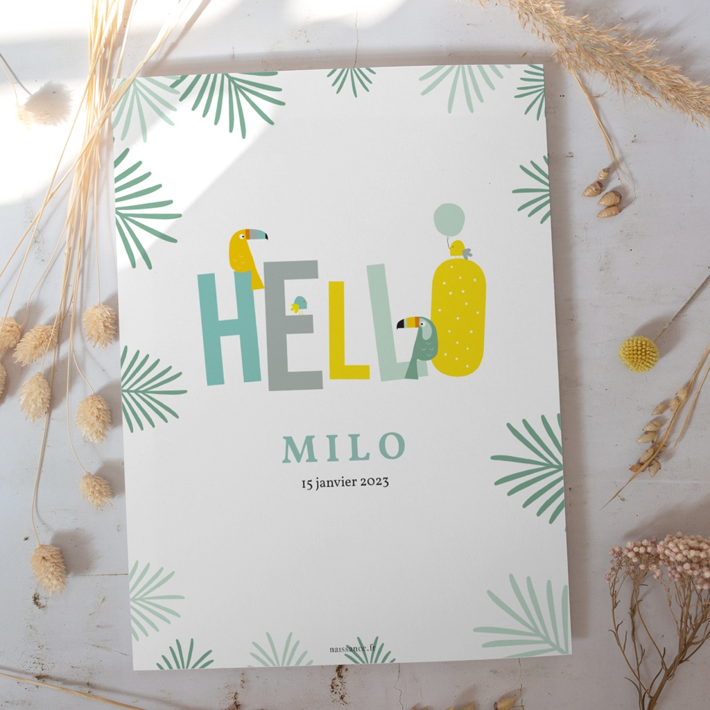 Affiche Déco Chambre Enfant Toucan Pastel garçon gratuit