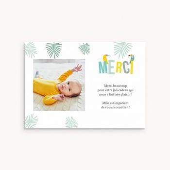Carte de Remerciement Naissance Toucan Pastel garçon