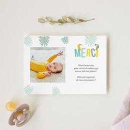 Carte de Remerciement Naissance Toucan Pastel garçon gratuit