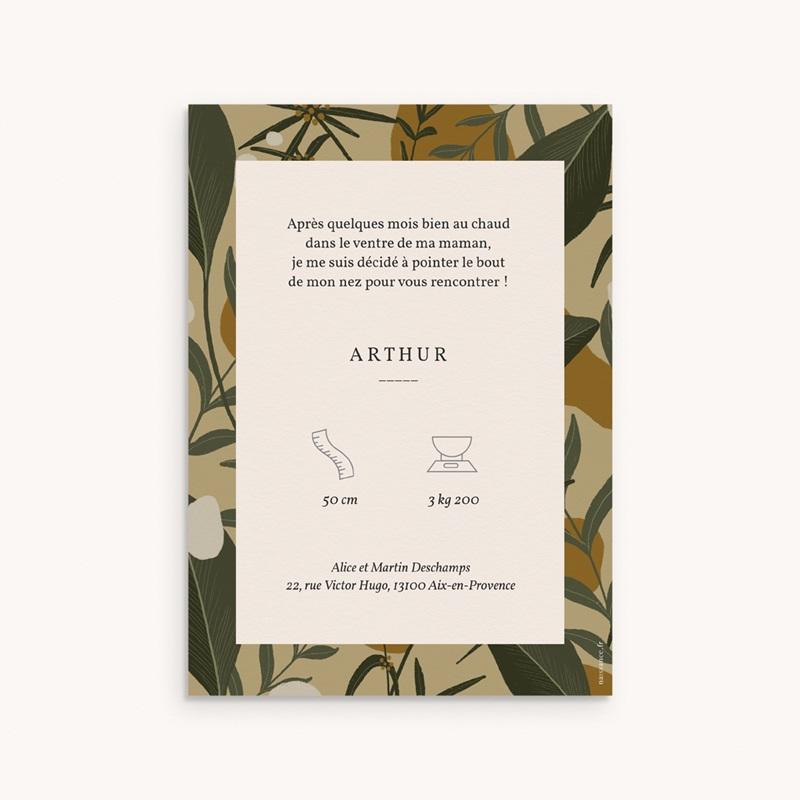 Faire-part de Naissance Portrait d'un aventurier, Motif Tropical gratuit