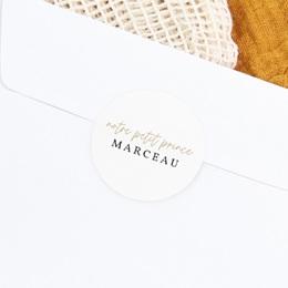 Sticker Enveloppe Naissance Beau Petit Prince gratuit