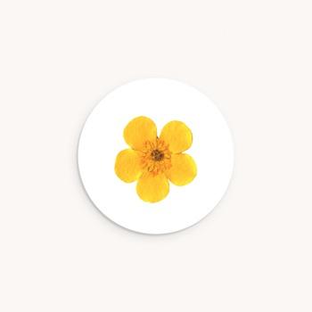 Sticker Enveloppe Naissance Herbier ensoleillé, 4,5 cm pas cher