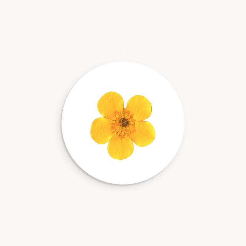 Sticker Enveloppe Naissance Herbier ensoleillé, 4,5 cm