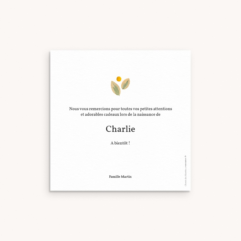 Carte de Remerciement Naissance Herbier Parme, 10 x 10 cm pas cher
