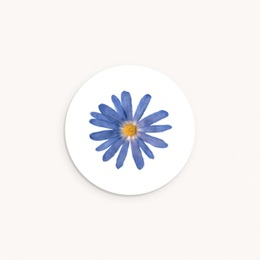 Sticker Enveloppe Naissance Herbier Bleuté, 4,5 cm