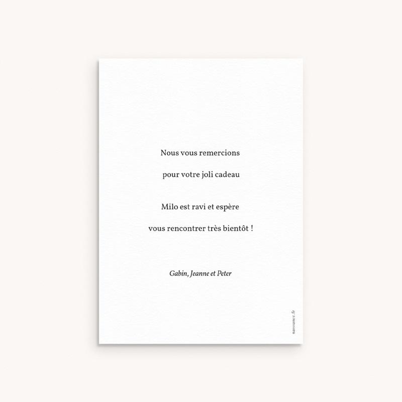 Carte de Remerciement Naissance Brin noir, beige, 10 x 14 cm pas cher