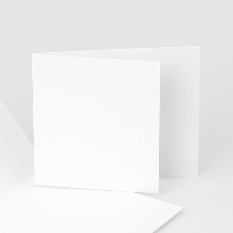 Carte de Remerciement Naissance vierge EL