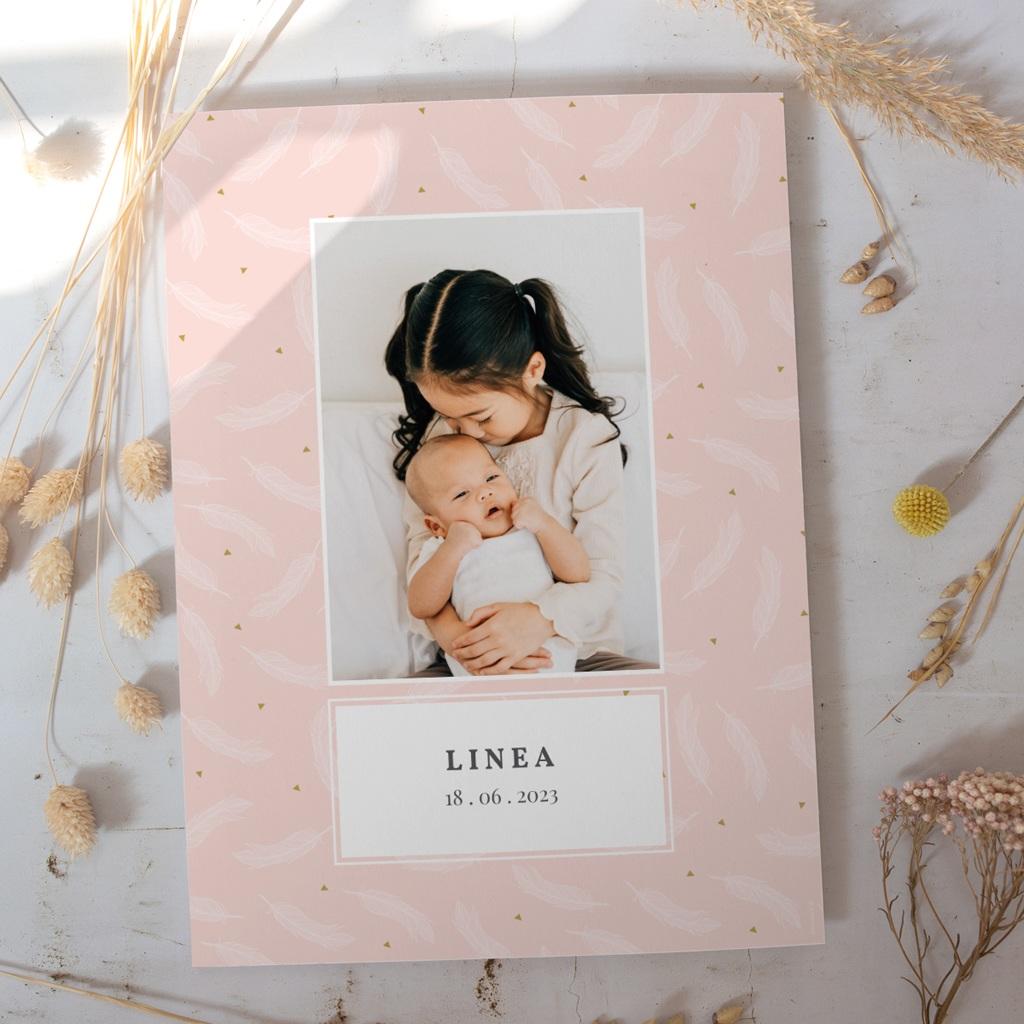 Affiche Déco Chambre Enfant Tendre Envol, plumes gratuit