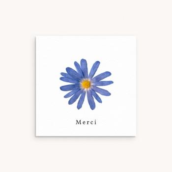 Carte de Remerciement Naissance Herbier Bleuté, 10 x 10 cm