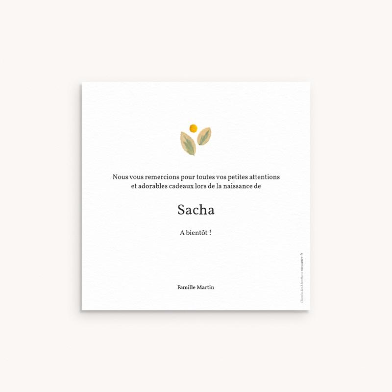 Carte de Remerciement Naissance Herbier ensoleillé, 10 x 10 cm pas cher