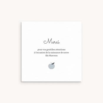 Carte de Remerciement Naissance Motif Pomme Gris Bleu pas cher