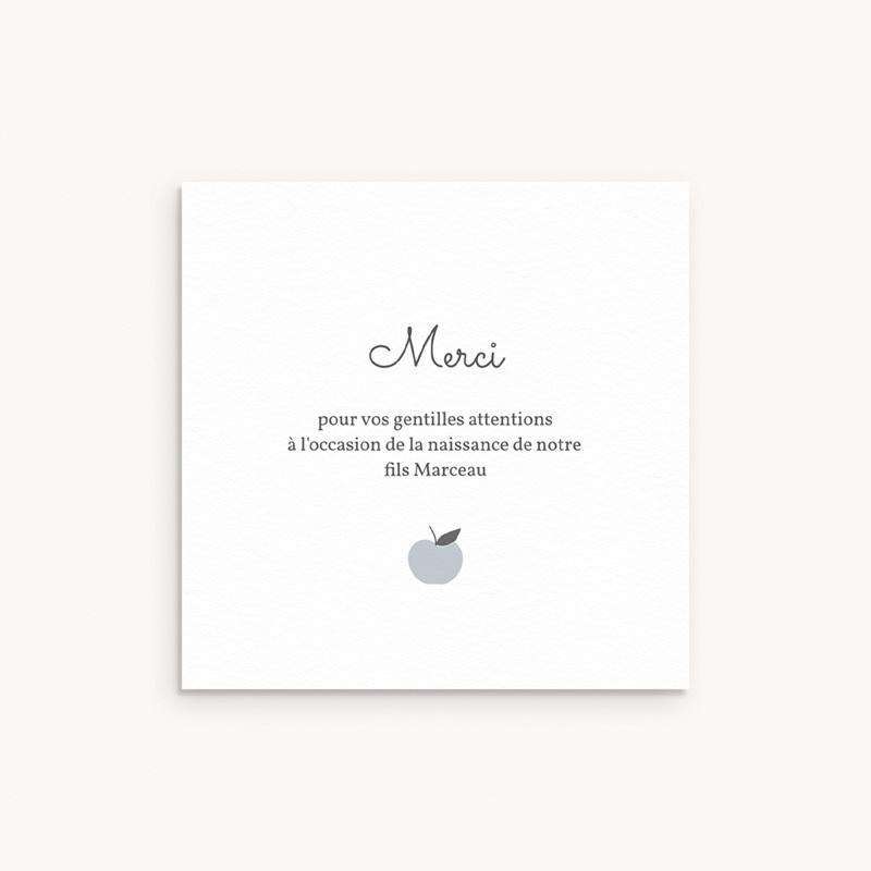 Carte de Remerciement Naissance Motif Pomme Gris Bleu