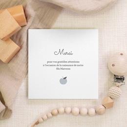 Carte de Remerciement Naissance Motif Pomme Gris Bleu gratuit